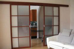 сдвижная дверь из двух полотен