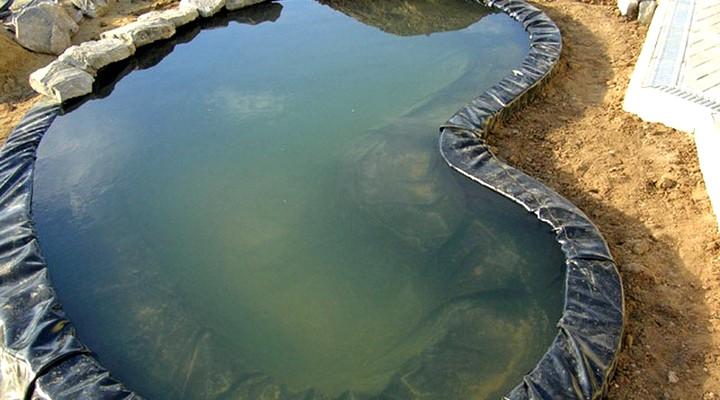 Как построить пруд на даче для разведения рыбы