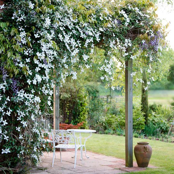 Беседка, которую оплетают стебли с пышными цветами и зеленью