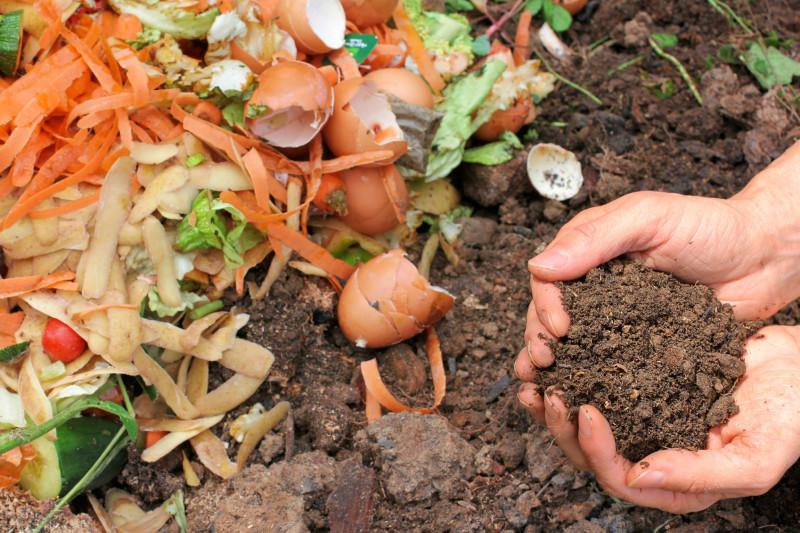 Заготовка компоста из органических отходов