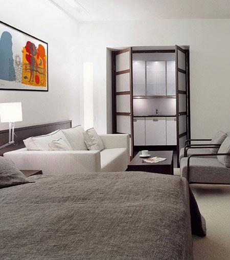 гостиная и спальня в одной комнате 15