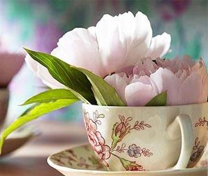 модное украшение интерьера - цветы в чашках фото1