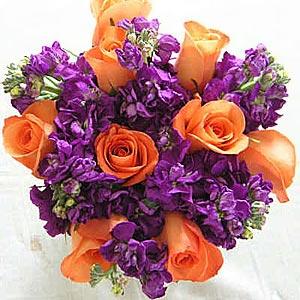 оранжевый и фиолетовый 43