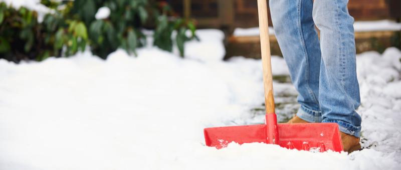 Лопаты для уборки снега пластиковые цены