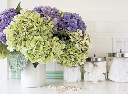 цветы в ванной комнате 15