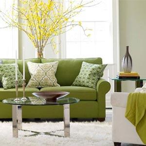 зеленый и желтый 11