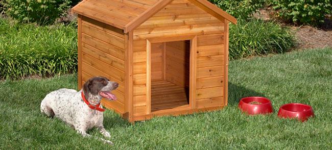 10 бесплатных идей для собачьей конуры1