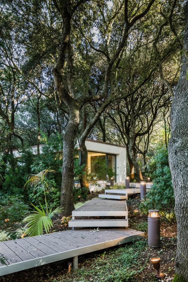дом в лесах сассари2
