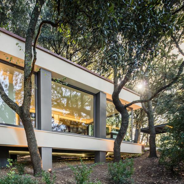 дом в лесах сассари3