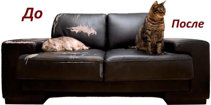 Реставрация обивки кожаного дивана