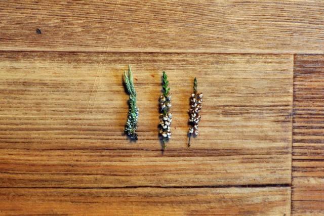 Кулон с травами внутри залитый эпоксидной смолой своими руками